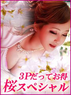 ◆◇◆お花見シーズン到来!◆◇◆